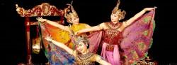 インドネシア・ナイト