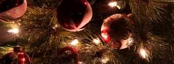 Persekutuan Malam Natal 2014