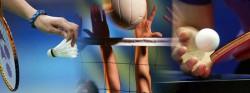 Kompetisi Olahraga GIII Tokyo 2013